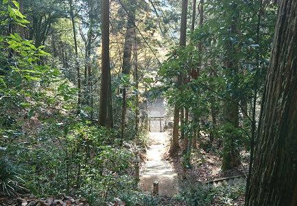どどりのパワースポット巡り 岡山県:サムハラ神社