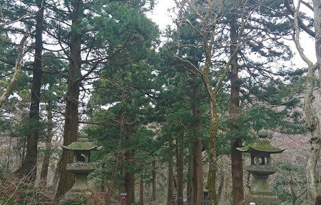 どどりのパワースポット巡り 鳥取県:大神山神社
